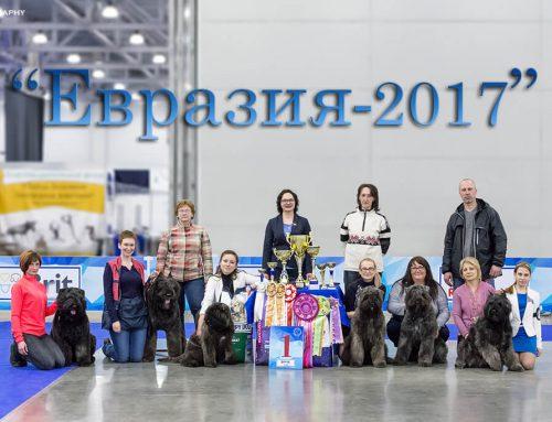 Евразия-2017 (3хCACIB)